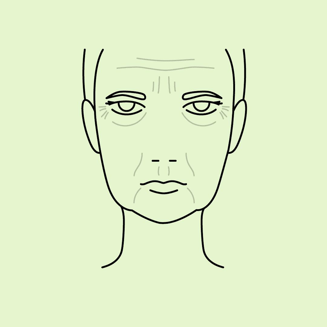 Zeichnung eines Frauengesichts zeigt den Alterungsprozess